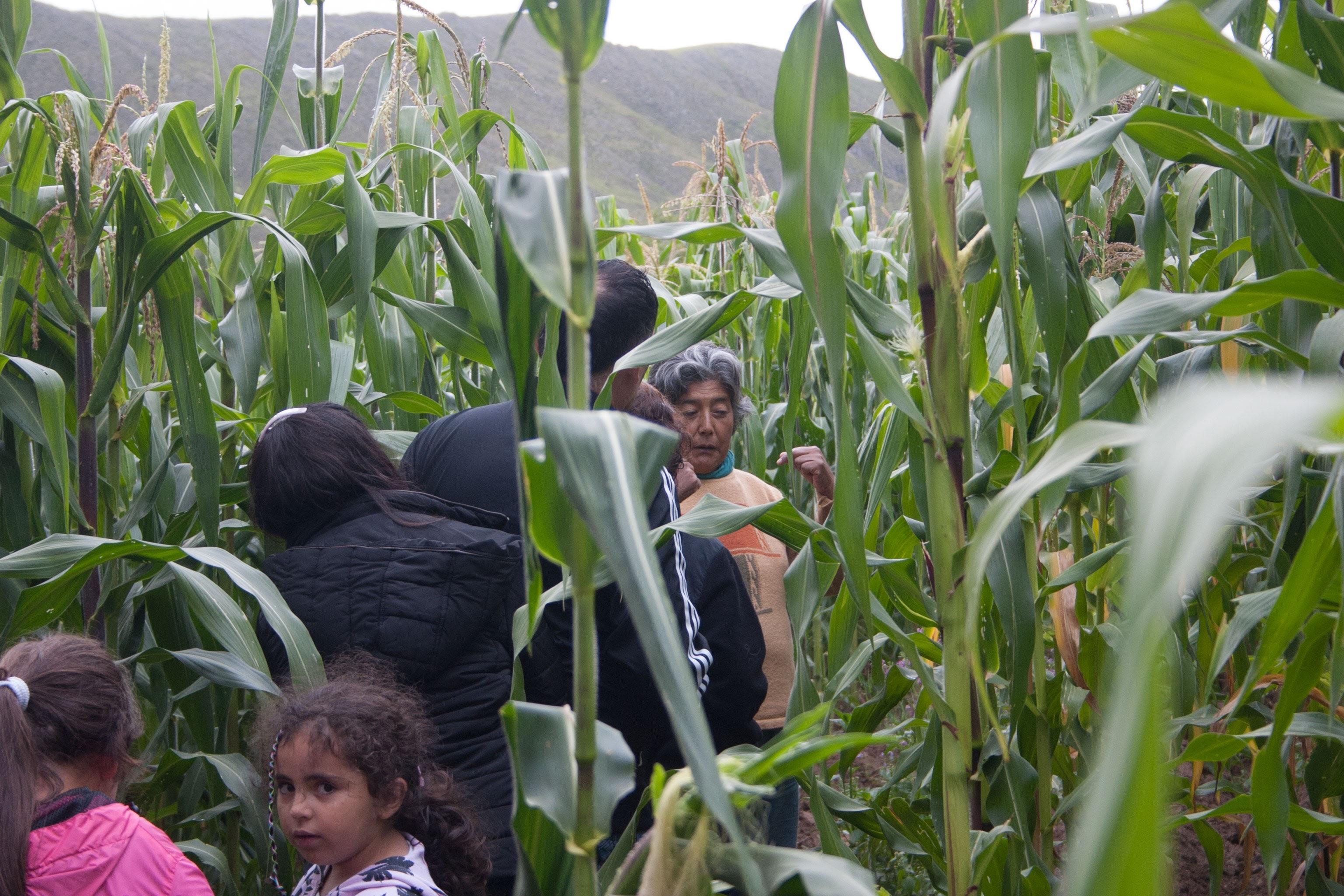 Doña Angela, entre leyendas, pan y su chacra, un viaje al pasado - Tafí del Valle