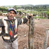 La Fiesta del Queso: con el Patio Criollo, reviven las tradiciones tafinistas - TafidelValle.com